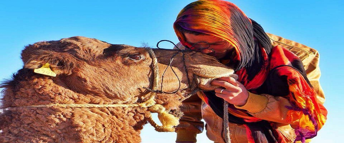 Morocco Private desert Tour Fes 5 Days