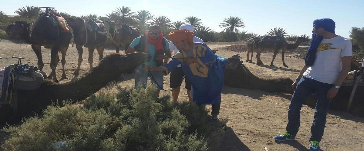 Morocco Desert Trip Tour  Fes 2 Days